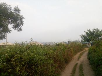 Genuine Eight Plots of Land, Odeku Area Off Liberty Academy Road, Akala Express, Challenge, Ibadan, Oyo, Mixed-use Land for Sale