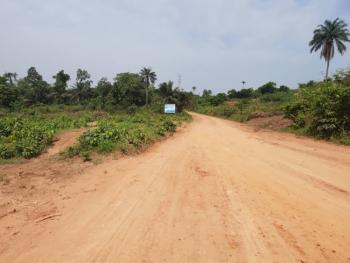 Land in a Beautiful Park, Beaufort Park Estate, Epe, Lagos, Residential Land for Sale