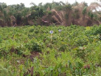 Residential Land, Isuaniocha, Awka, Anambra, Residential Land for Sale