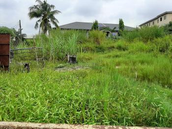 Two Plots of Land, Treasure Estate, Sangotedo, Ajah, Lagos, Residential Land for Sale
