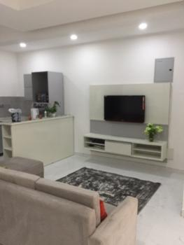 Luxurious 2 Bedroom, No 25 Onikoyi, Mojisola Onikoyi Estate, Ikoyi, Lagos, Self Contained (single Rooms) Short Let