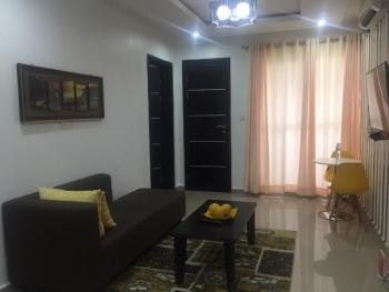 Luxurious Fully Furnished and Serviced Mini Flat with a Fitted Kitchen, Old Ikoyi, Ikoyi, Lagos, Mini Flat Short Let