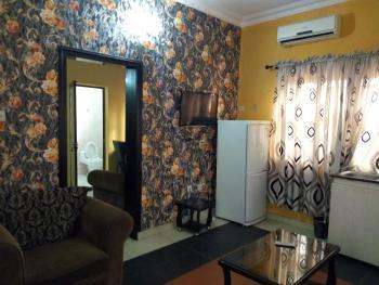 Furnished 1 Bedroom Mini Flat, Lekki Right Hand Side, Lekki Phase 1, Lekki, Lagos, Mini Flat for Rent
