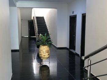 Luxury Fully Serviced 2 Bedroom Flat Fully Equipped Kitchen, All Ensuites, Banana Island, Ikoyi, Lagos, Flat for Rent