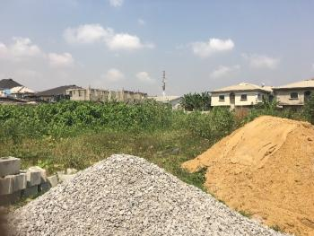 Half Plot of Land, Off Pedro Road, Pedro, Gbagada, Lagos, Land for Sale
