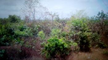 New Layout (1700 Plots of Land), Eziama Community Land Close to Trans-ekulu., Abakpa Nike, Enugu, Enugu, Mixed-use Land for Sale