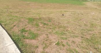 Half Plot of Land, Startime Estate, Festac, Isolo, Lagos, Commercial Land for Sale
