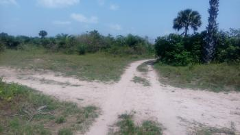618 Acres of Land, Erekiti Village, Mowo, Age Mowo, Badagry, Lagos, Mixed-use Land for Sale