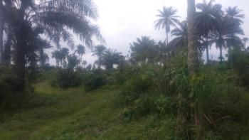 2209 Plots of Commercial Land, Owaza, Off Port Harcourt-aba Express Road, Ukwa, Abia, Commercial Land for Sale
