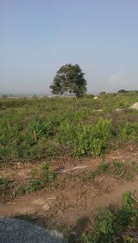 Prime Land, Festac, Isolo, Lagos, Commercial Land for Sale