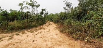 Plots of Land  1006.461sqm, Ibafo, Ogun, Residential Land for Sale