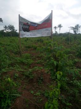Affordable Land, Loburo, Mowe Ofada, Ogun, Mixed-use Land for Sale