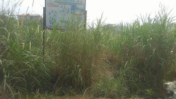 Virgin Dry Land, Oshorun Heritage, Opic, Isheri North, Lagos, Residential Land for Sale