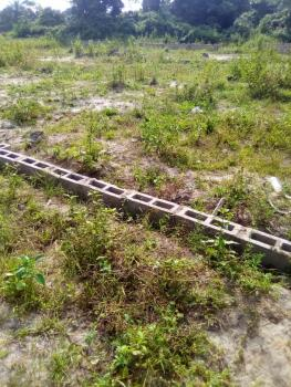 1 Hectare (15 Plots) of Land, Sangotedo, Ajah, Lagos, Residential Land Joint Venture