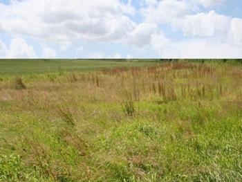 Waterfront Land Measuring 40,000sqm, Alma Beach Estate, Lekki, Lagos, Mixed-use Land for Sale