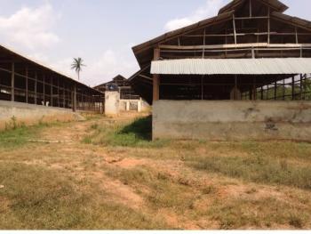 Poultry Farm, Ogunwole Village Near Idi Iroko, Idi Ayunre, Oluyole, Oyo, Factory for Sale