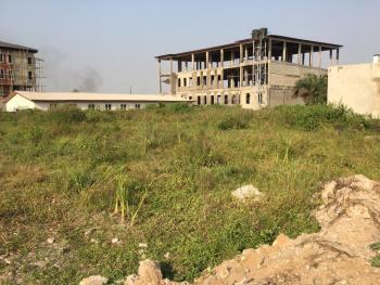 1600sqm of Land, Alasia, Olokonla, Ajah, Lagos, Residential Land Joint Venture