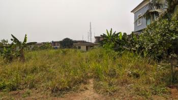 2 Plots of Prime Land with Governors Consent, Kings Avenue, Adeoni Estate, Bemil Estate, Ojodu, Lagos, Mixed-use Land for Sale