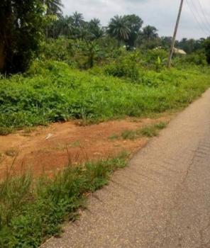 Land with Cofo, Off Ketu Ejirin Road, Beside Gracais Farm, Epe, Lagos, Mixed-use Land for Sale