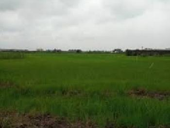 Waterfront Land Measuring 800sqm, Banana Island, Ikoyi, Lagos, Mixed-use Land for Sale