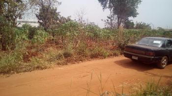Buy and Build Land, Ibagwa Nike, Abakpa Nike, Enugu, Enugu, Residential Land for Sale