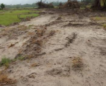Southern Atlantic Villas, Okun Imosan, Akodo Ise, Ibeju Lekki, Lagos, Mixed-use Land for Sale