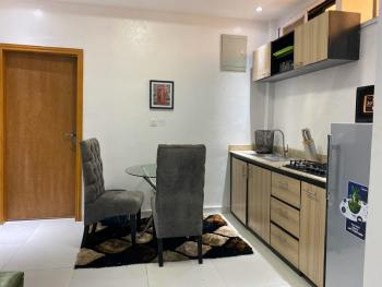 Fully Furnished and Serviced One Studio Apartment, Ikate Elegushi, Lekki, Lagos, Self Contained (single Rooms) for Sale