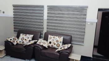 Exquisite Furnished and Serviced 3 Bedroom Apartment, Asokoro District, Abuja, Mini Flat for Rent