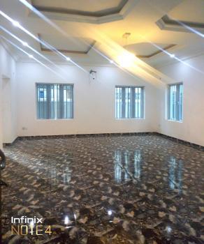 Nice and Standard Mini Flat, Opposite Victory Park Estate, Osapa, Lekki, Lagos, Mini Flat for Rent