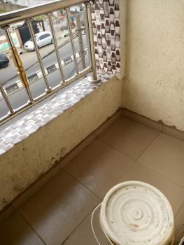 Newly Built Clean Miniflat, Ogunlana Drive, Ogunlana, Surulere, Lagos, Mini Flat for Rent