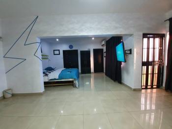 Luxury One Bedroom Penthouse, Omole Phase 2, Ikeja, Lagos, Flat Short Let