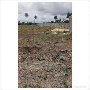 Dry Estate Land with Government Excision, Otolu Igbo Olomi Directly Off Lekki Free Trade Zone Road, Ogogoro, Ibeju Lekki, Lagos, Mixed-use Land for Sale