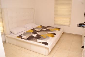 Furnished 2 Bedroom Apartment, Ty Danjuma Street ., Victoria Island (vi), Lagos, House Short Let