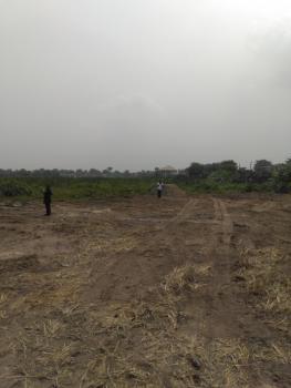 Gazetted Dry Land, Behind Lekki Free Trade Zone, Ibeju Lekki, Lagos, Residential Land for Sale