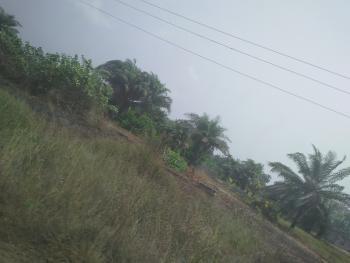 Garcias Garden Scheme 3 Extension, Ise, Folu Ise, Ibeju Lekki, Lagos, Residential Land for Sale