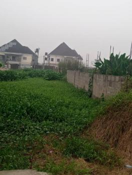 Billionaires Quarters, Aa Close, Festac, Isolo, Lagos, Mixed-use Land for Sale