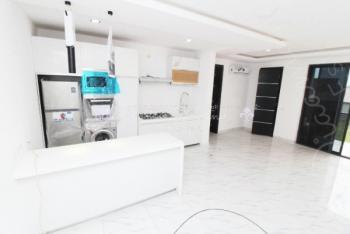 Mini Flat, One Bedroom, 24hr Light, Serviced, Ikate Elegushi, Lekki, Lagos, Mini Flat for Sale