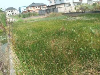 Land Size Measuring About   650.000 Sqm, Diamond Estate, Sangotedo, Ajah, Lagos, Residential Land for Sale