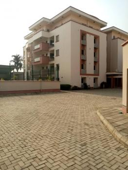 Luxury 2 Bedroom Penthouse with an Excellent Facilities, By Luis Edet House, Asokoro District, Abuja, Flat for Rent