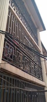 Nice Renovated 3 Bedroom Flat, Aguda, Surulere, Lagos, Flat for Rent