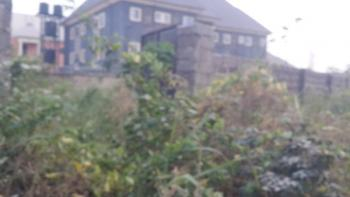 Two Plots Fenced with Gate and Secured with C of O Best Suited, Bishop Court Near Imo State University Owerri, Orji, Owerri, Imo, Commercial Land for Sale