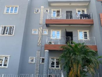 Luxurious 2 Bedroom Apartment, Asokoro District, Abuja, Mini Flat for Rent