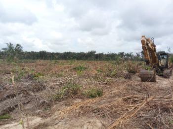Affordable and Cheap Acres, Eleranigbe Garden City, Eleranigbe, Ibeju Lekki, Lagos, Mixed-use Land for Sale
