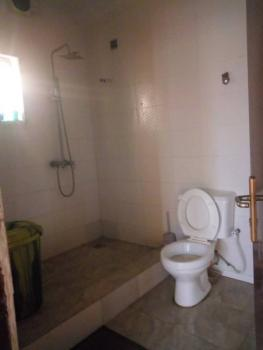 Executive and Spacious Miniflat, Soluyi, Gbagada, Lagos, Mini Flat for Rent