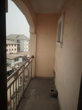 Super and Executive Brand New Mini Flat, Off Lawanson Road, By Zenith Bank, Lawanson, Surulere, Lagos, Mini Flat for Rent