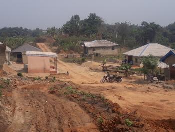 Land, Agric Okeoko Ikorodu, Agric, Ikorodu, Lagos, Mixed-use Land for Sale