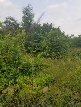 Land, Behind Ogunfayo, Before Eputu, Ogogoro, Ibeju Lekki, Lagos, Land for Sale