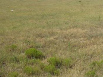 8,000sqm of Dry Bare Land, Lekki Expressway, Lekki, Lagos, Mixed-use Land for Sale