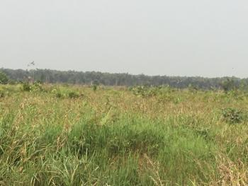 Land Development Clearing Project R.o.i 120%, Akodo, Ftz, Dangote Refinery, Akodo Ise, Ibeju Lekki, Lagos, Land Joint Venture