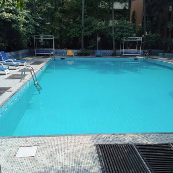 Serviced Luxury 3bedroom Flat with a Bq, Modupe Alakija, Osborne, Ikoyi, Lagos, Flat for Rent